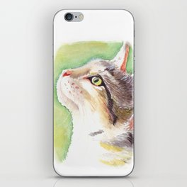Tabby iPhone Skin