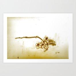 What the Bloom Art Print