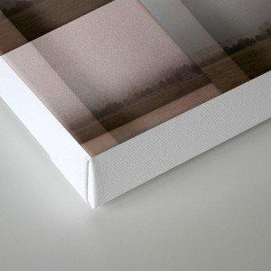 Subdivision 2 Canvas Print