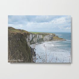 In the North Metal Print