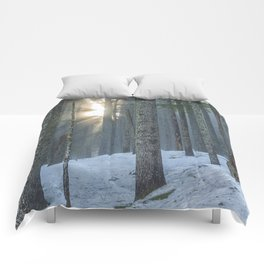 Woods on a Winter's Day Comforters