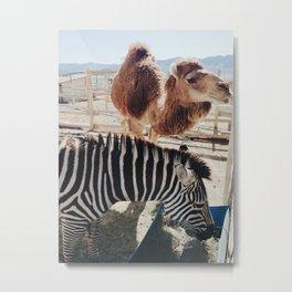 Petting Zoo Pals Metal Print