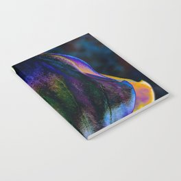 Lantern Notebook