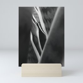 Contrast Mini Art Print