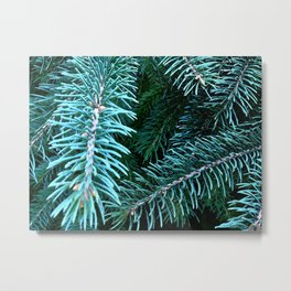 Pining for the Northwoods Metal Print