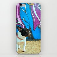 frenchie iPhone & iPod Skins featuring Frenchie by HANS-G