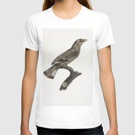 Varied Jay from Histoire Naturelle des Oiseaux de Paradis et Des Rolliers (1806) by Jacques Barraban T-shirt