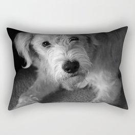 Baxter Rectangular Pillow