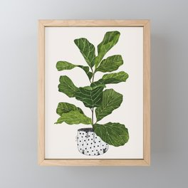 Fiddle leaf fig Tree Framed Mini Art Print