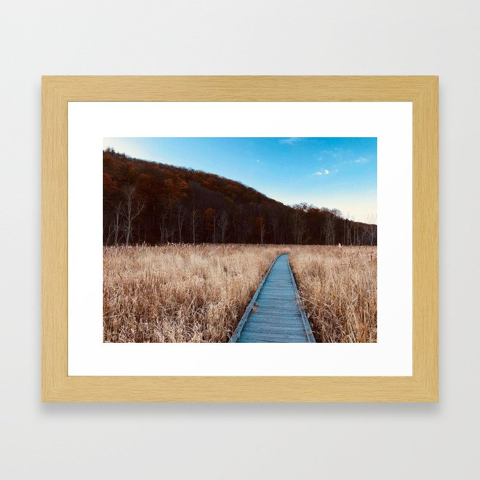 A walk on the AT Framed Art Print