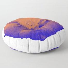 Peyote Psychedelic Floor Pillow