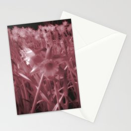 Infra-Red Daffodils Stationery Cards
