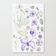 Violet Watercolor Canvas Print