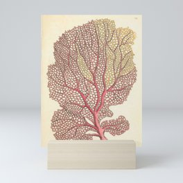 Naturalist Sea Coral Mini Art Print