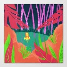 hidden lake Canvas Print