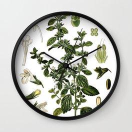 Nature, botanical print, flower poster art of Lemon Balm Wall Clock