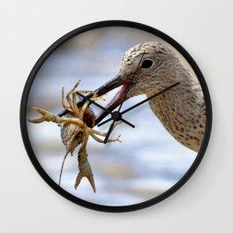 Watercolor Bird, Willet 07, Eating Rusty Crayfish, Longmont, Colorado, Hearty Snack Wall Clock