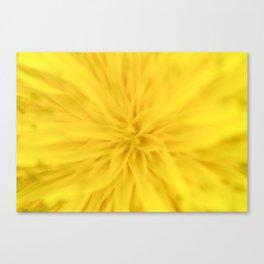 Sunny yellow spring Canvas Print