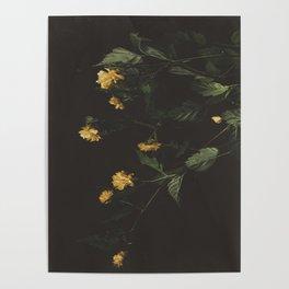 Yellow Night Poster