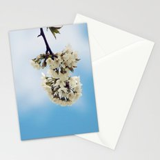 White & Blue Stationery Cards