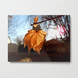 I ♥ Autumn Metal Print