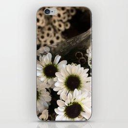 Gerbera Daisies iPhone Skin