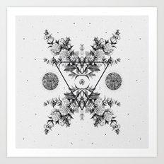 PYXIS ii Art Print
