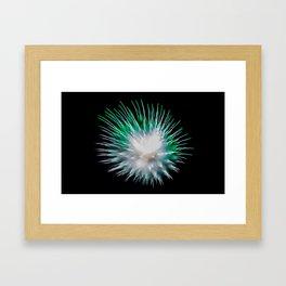 Firework Creations - Tulipfest 13 Framed Art Print