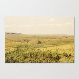 Western Valley Canvas Print