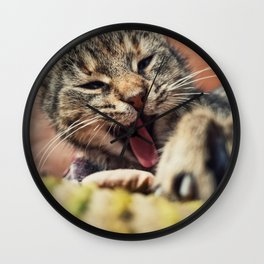 Close up vertical portrait of funny lazy striped cat, sleepy yawning as laying down outdoors. Wall Clock