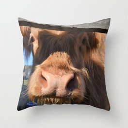 Want to be Friends? Throw Pillow