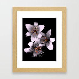 Black and White Ant Lilies Flower Scanography Framed Art Print