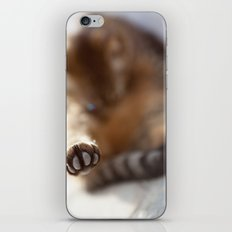 Speak to my paw iPhone & iPod Skin