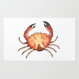 Crab: Fish of Portugal Rug