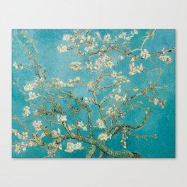 Almond Blossoms by Van Gogh Canvas Print