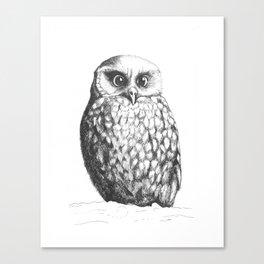 Morpork Canvas Print