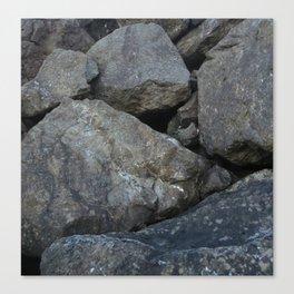 Rocks of Puget Sound Canvas Print