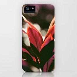 Hawaiian Plant iPhone Case