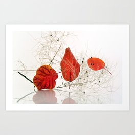 Red falling leaves  Art Print