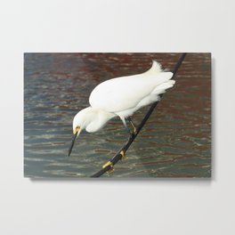 Tightrope Metal Print