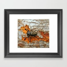 One Tough Bug Framed Art Print