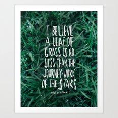 Leaf of Grass Art Print