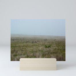 Zebras in the Mist Mini Art Print