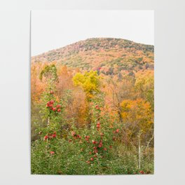 Autumn Upstate Poster