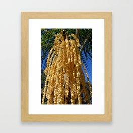 Cascading Seed Pod Framed Art Print