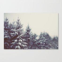 Winter Daydream #2 Canvas Print