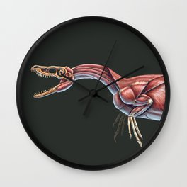 Velociraptor Mongoliensis Muscle Study (No Labels) Wall Clock