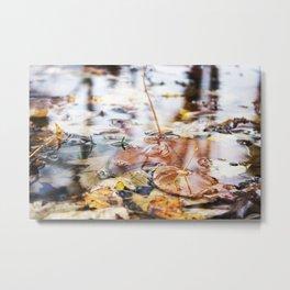 Autumn Leaves in Lake Metal Print
