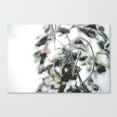 Winter. Canvas Print