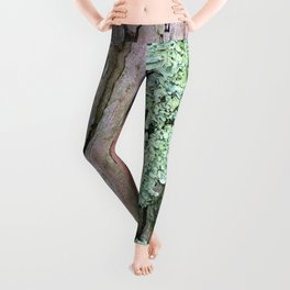 Tree Bark Pattern with Lichen #1 Leggings